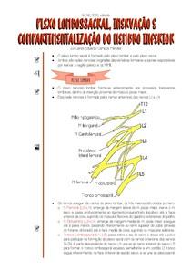 [06 06 2020] Plexo Lombossacral, Inervação e Compartimentalização do Membro Inferior
