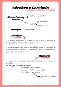 Cérebro e Cerebelo - SNC + Ataxia