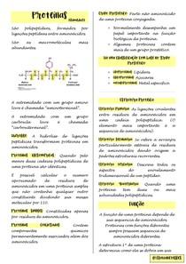 Proteinas bioquimica