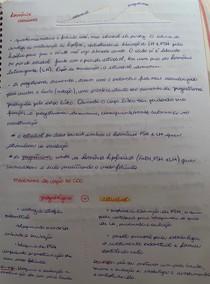 hormônios - progestágeno e estradiol