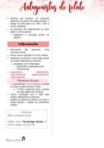 Antagonistas do Folato (ácido fólico)