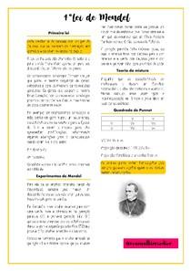 Primeira lei de Mendel