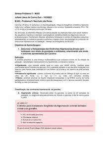 Síndromes hipertensivas graves (pré-eclâmpsia grave, eclâmpsia, síndrome de hellp)