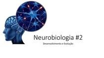Neurobiologia #2 - Evolução e Desenvolvimento