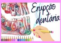 erupção dental