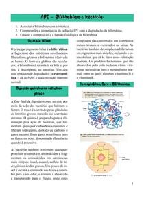 Bilirrubina e Icterícia (1)