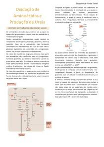 Resumo_Oxidação de Aminoácidos e Produção de Ureia