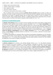 Glândulas submandibular e sublingual - Gânglio submandibular