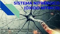 Sistema Nitrérgico (NO)