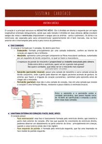 Cardio: anatomia + fisiologia