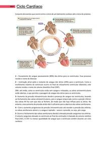 Ciclo Cardíaco - Bases Morfofuncionais 2