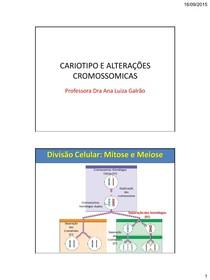 Aula 3 Cariotipo e Alterações cromossomicas