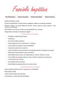 Fasciola hepatica - Fasciolíase - Helmintologia