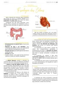 Fisiologia dos Cólons (Intestino Grosso)