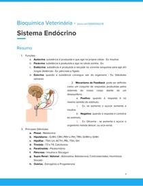 Sistema Endócrino   BQ.V