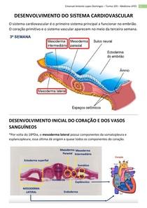 Embriologia - Sistema Cardiovascular