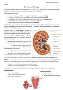 RESUMO - Introdução a Nefrologia