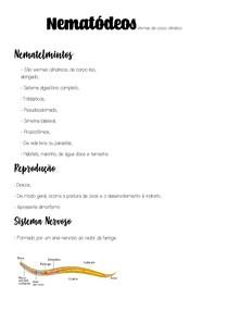 Nematódeos - Vermes de corpo cilíndrico
