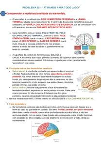 Neuroanatomia: telencéfalo, meninges, liquor, seios venosos e irrigação cerebral