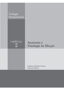 Anatomia e fisiologia da micção