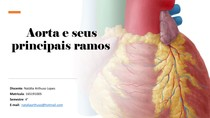 Aorta e Seus Principais Ramos