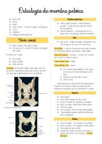 Osteologia do membro pelvico
