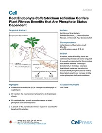 Himura 2016 Root Endophyte