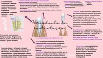 Periodonto de sustentação mapa- RAFAELLY ALVES VIEIRA
