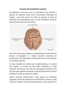 Funções dos hemisférios cerebrais