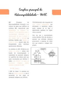 Complexo principal de Histocompatibilidade MHC
