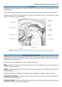 Hipotálamo (inclui: divisões e núcleos; conexões; funções)