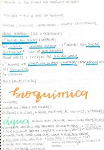 filo cnidaria/ bioquímica