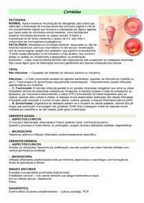 Cervicite e Salpingite