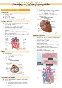 semiologia do sistema cardiovascular