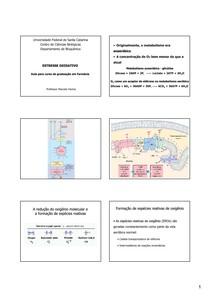 Estresse oxidativo - 2009-2 - PB