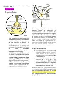 BIOPOTENCIAIS - POTENCIAL DE REPOUSO E POTENCIAL DE AÇÃO