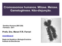 Aula 5 - cromossomos e gametogenese farma 2011