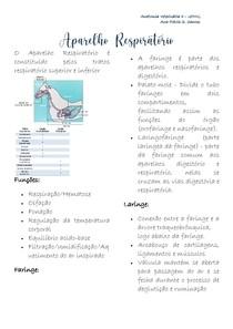 Aparelho Respiratório- ANATO II
