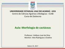 aula 4  morfologia de cactaceas