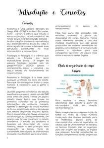 Introdução Anatomia I