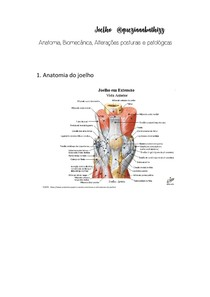 Joelho - Anatomia, Biomecânica, Alterações posturais e patológicas