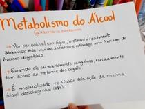 Metabolismo do Álcool