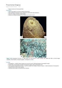 Anatomia patológica e fisiopatologia - Pneumonias fúngicas