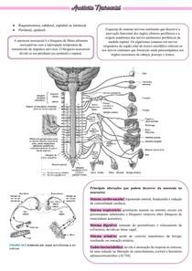 ANESTESIA NEUROAXIAL
