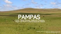 PAMPAS - APRESENTAÇÃO DE SLIDES - SEMINÁRIO CIÊNCIAS DO AMBIENTE - 2° PERÍODO - ENGENHARIA CIVIL (2019/1)