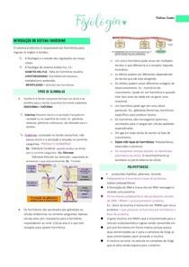 Sistema endócrino; Gônadas masculinas e femininas; fertilização; sistema urinário; Sistema nervoso