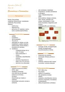 Parvovirose e Coronavírus