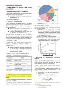 FISIOLOGIA DA CIRCULAÇÃO E MICROCIRCULAÇÃO