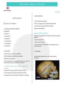 Neurocrânio