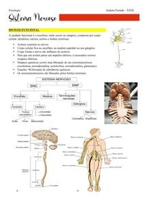 Roteiro de Neurofisiologia parte 1